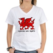 "Y Ddraig Goch in Black and Red with ""cymru am byth"