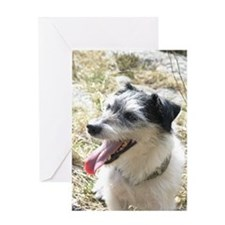 JackRussel01 Greeting Card