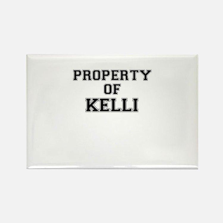 Property of KELLI Magnets