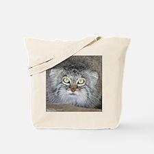 Pallas' Cat Tote Bag