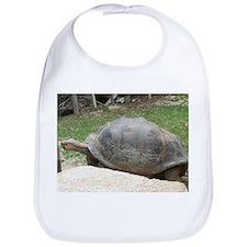 galapagos tortoise Bib