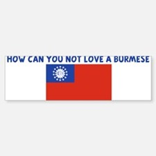 HOW CAN YOU NOT LOVE A BURMES Bumper Bumper Bumper Sticker