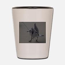 seagull Shot Glass