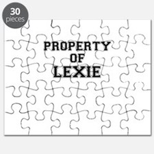Property of LEXIE Puzzle