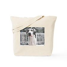 NH In Snow Tote Bag