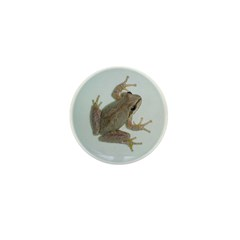 Pacific Treefrog Mini Button (100 pack)