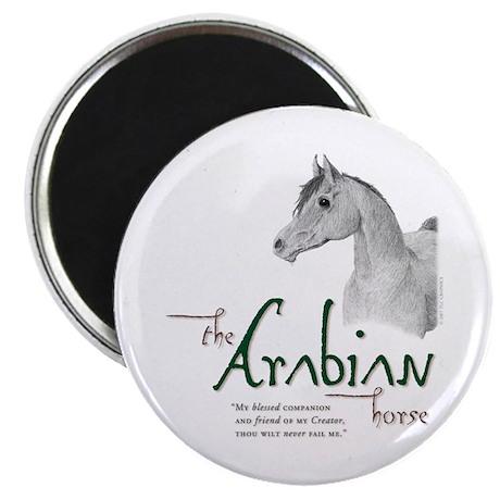 The Classic Arabian Horse Magnet
