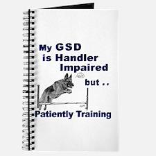 GSD Agility Journal