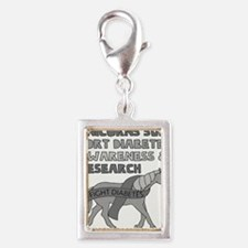 Unicorns Support Diabetes Awareness Charms