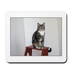 Glamour Puss Mousepad