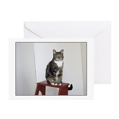 Glamour Puss Greeting Cards (Pk of 20)
