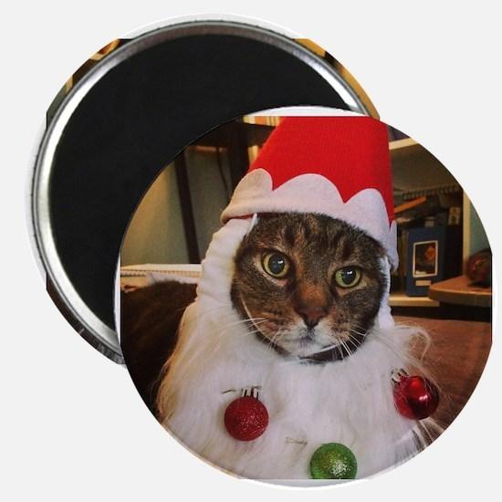 Unique Orange tabby cat christmas Magnet