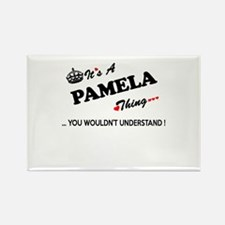 PAMELA thing, you wouldn't understand Magnets
