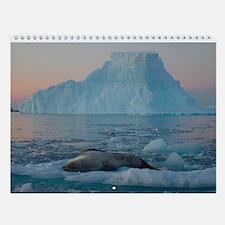 Antarctic Wall Calendar