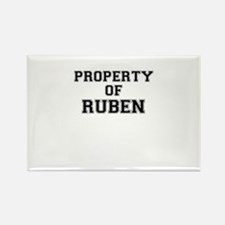Property of RUBEN Magnets