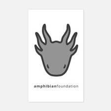 Amphibian Foundation Logo - Grey Decal