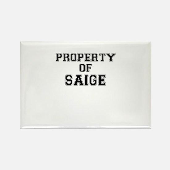 Property of SAIGE Magnets