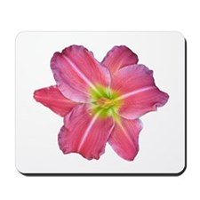 Day Lily Mousepad