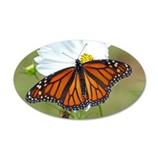 Monarch Butterfly on Cosmos Wall Decal
