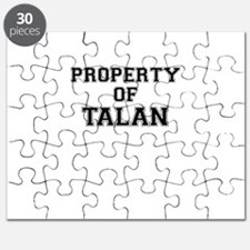 Property of TALAN Puzzle