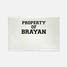 Property of BRAYAN Magnets