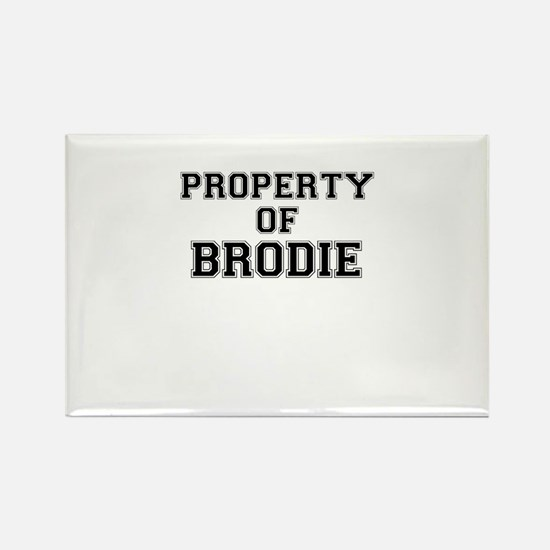 Property of BRODIE Magnets