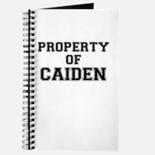 Property of CAIDEN Journal