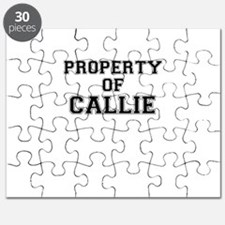 Property of CALLIE Puzzle