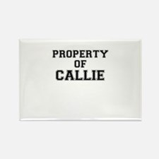 Property of CALLIE Magnets