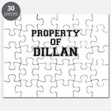 Property of DILLAN Puzzle