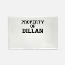 Property of DILLAN Magnets