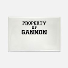 Property of GANNON Magnets