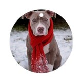 Pit bull Round Ornaments