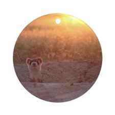 Black-Footed Ferret Ornament (Round)