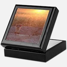 Black-Footed Ferret Keepsake Box