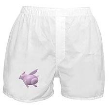 Flying Pig Icon Boxer Shorts