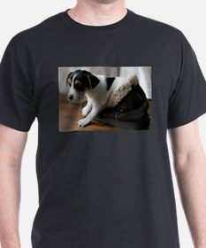 Puppy in Ugg Boo T-Shirt