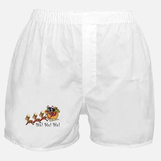 Cooper & Cricket Boxer Shorts