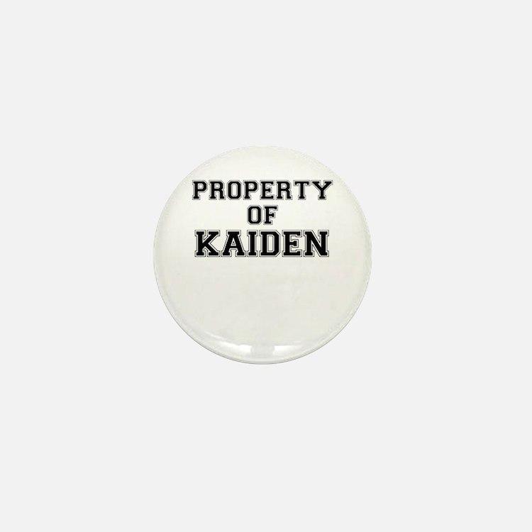 Property of KAIDEN Mini Button