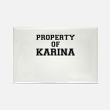 Property of KARINA Magnets