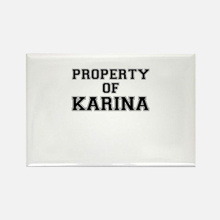 Property of KARINA Magnets
