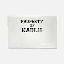 Property of KARLIE Magnets