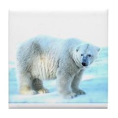 Polar Bear Shadow (Snow) Tile Coaster