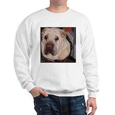 Shar-Pei Sweatshirt 11