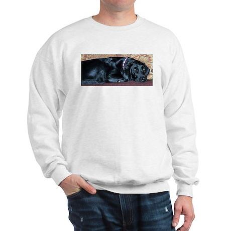 Couch Potato Sweatshirt