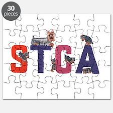 Color Logo Puzzle