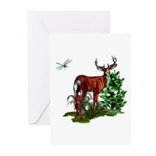 Majestic Mossy Buck  Greeting Cards (Pk of 20)