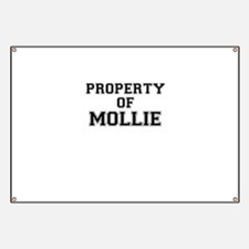 Property of MOLLIE Banner