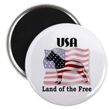 USA-Land of the Free Magnet