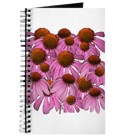 Purple Coneflowers {Echinacea Journal